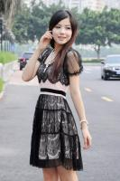 Lace Short-sleeved Dress