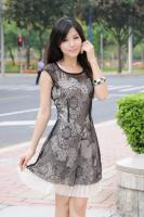 Lace Sleeveless Waist Dress