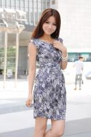 Spring Summer Chiffon Printed Sleeveless Dress